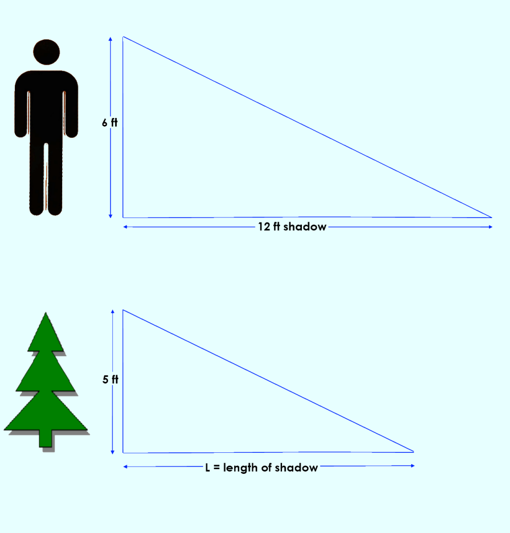 similar triangles:  calculating the length of a shadow *** Click to enlarge image ***