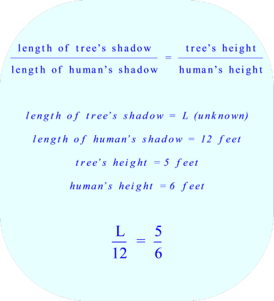 using a proportion to calculate the length of a shadow *** Click to enlarge image ***