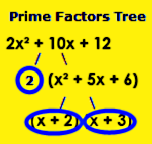 Factor Tree – Algebraic Expression