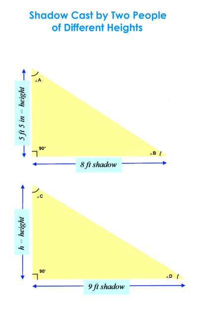 Length of Shadows - Similar Triangles