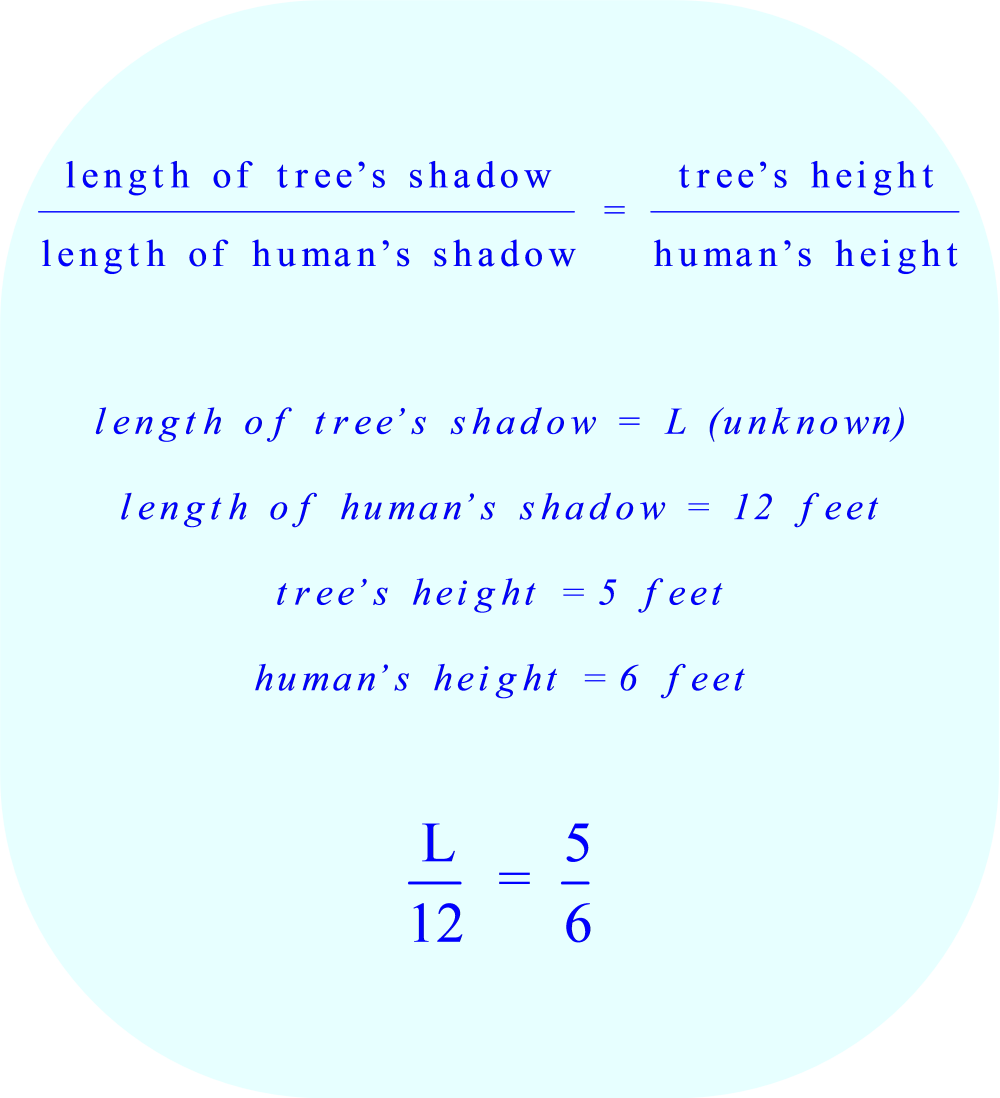 using a proportion to calculate the length of a shadow 